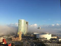 Miami Fog 2